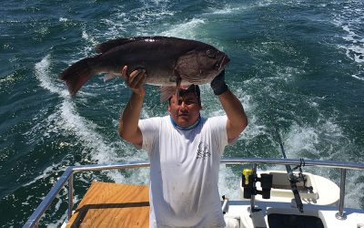 Sportfishing El Banco in April, They are biting!