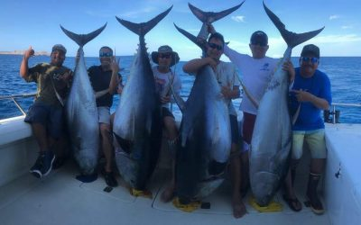 Puerto Vallarta Cow Tuna Fishing